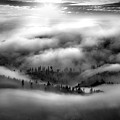 Coastal Range Bw by Leland D Howard
