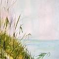 Coastal Scene by Sibby S
