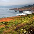 Coastal Views by Frank Wilson