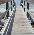 Coastal Walkway by Jan Gelders