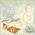 Coastal Waterways - Seashells by Audrey Jeanne Roberts