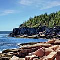 Coastline And Otter Cliff 3 by John Trommer