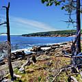 Coastline At Otter Point 1 by John Trommer