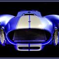 Cobra by Jay Droggitis