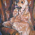 Cocker Spaniel On Chair by Lee Ann Shepard