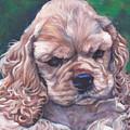 Cocker Spaniel Puppy by Lee Ann Shepard