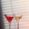 Cocktails With Strainer by Amanda Elwell