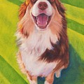 Coco by Pet Whimsy  Portraits