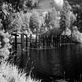 Cocolala Creek Slough by Lee Santa