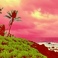 Coconut Palm Makai For Pele by Joalene Young