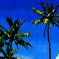Coconut Palms 5 by Douglas Simonson