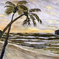 Coconut Palms On Cloudy Day by Anne Sands