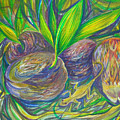 Coconuts by Anna  Duyunova