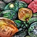 Coconuts by Kathy De Cano