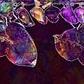 Cocoons Butterflies Larva Larvae  by PixBreak Art