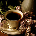 Coffee And Lilacs In The Morning by Lois Bryan