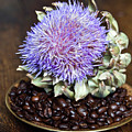 Coffee Beans And Blue Artichoke by Silva Wischeropp