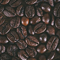 Coffee Beans Texture by Jose Luis Agudo