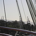 Coffee Brown Rail Of Queen Mary by Colleen Cornelius