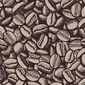 Coffee In Grain by Long Shot