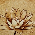 Coffee Painting Water Lilly Blooming by Georgeta  Blanaru