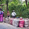 Coffee Pickers In Guatemala by Tatiana Travelways