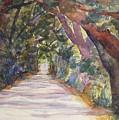 Coffin Point Road by Stella Schaefer