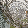 Coiled Razor Wire On Fence by Karen Foley