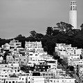 Coit Tower View In San Francisco California Usa - Black And White by Gregory Ballos