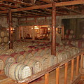 Colchagua Valley Wine Barrels by Brett Winn
