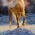 Cold Day For A Warm Welcome by Mary Ann Cherry