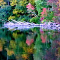 Cold Spring Harbor Reflections by Ed Weidman