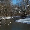 Cold Water by Ellen B Pate