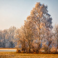 Cold Winter Evening In The Valley by Hanns-Peter Eisold