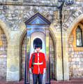 Coldstream Guard by David Pyatt