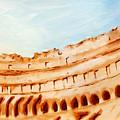 Coliseum, Rome, Italy by Alessandro Nesci