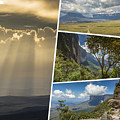 Collage Of Table Mountain Roraima  by Mariusz Prusaczyk