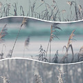 Collage Of Winter Time In Poland. by Mariusz Prusaczyk