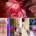 Collage So Rosey by Jacqueline Manos
