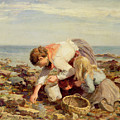 Collecting Shells  by William Marshall Brown