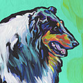 Collie Collie by Lea