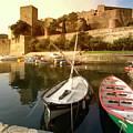 Collioure Castle by Robert Stein