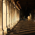 Collonade At San Marco In Venice In The Morning by Michael Henderson