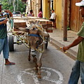 Colombia Streets II by Brett Winn
