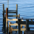 Colonial Beach Pilings by Clayton Bruster