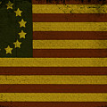 Colonial Flag by Bill Cannon