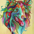 Color Me Collie by Sherry Shipley