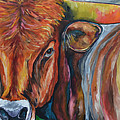 Color Me Texas by Patti Schermerhorn