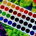 Color Palette by Michelle McPhillips