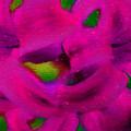 Color Schemes by Debra Lynch
